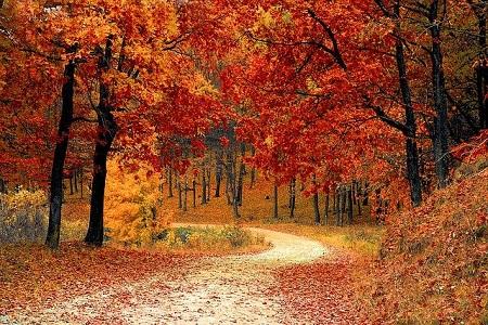 Autumn CND Colours